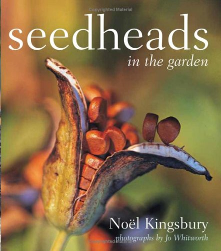 Seedheads in the Garden PDF