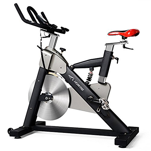 Professional Indoor Cycling Bike With LCD Monitor and 55lb flywheel - Commercial Standard (Flywheels Standard)