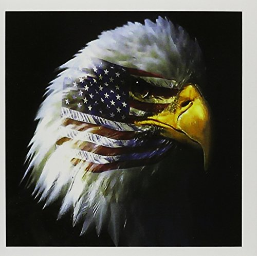 - 3dRose Set of 12 Greeting Cards, Bald Eagle with USA Flag Superimposed (gc_109328_2)