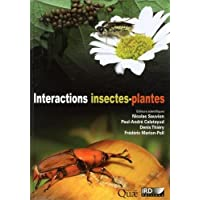 Interactions insectes-plantes