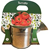 Kit Plantation Arrosoir - avec Graines de Tomate à Cultiver