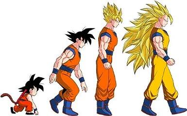 Okiwoki Sweat /à Capuche Enfant Noir Dragon Ball Z Parodie Dragon Ball Z - DBZ DBZ parodique Sangoku Super Saiyajin La Th/éorie de l/évolution
