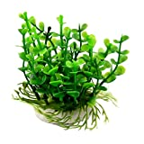 uxcell® Underwater Ornamental Live Small Leaves Aquatic Fish Tank Aquarium Plant Green