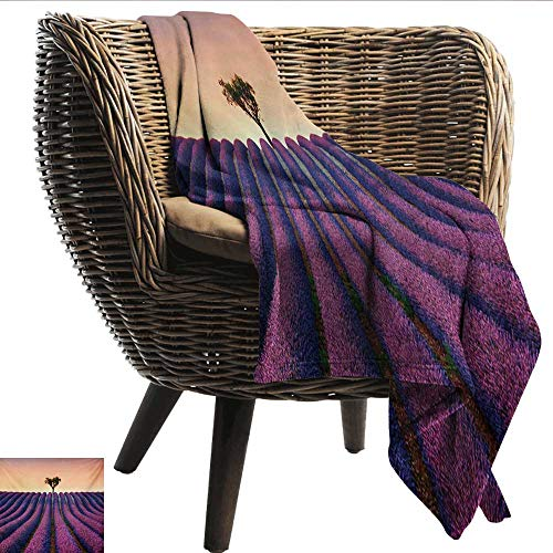 EwaskyOnline Tree Travel Blanket Lavender Flowers Blooming Field and A Tree Uphill on Sunset Valensole France Print Recliner Throw,Couch Throw, Couch wrap 60