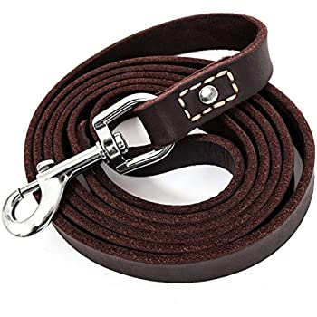 "Leatherberg Leather Dog Training Leash Brown 6 Foot x 3/4"" Dog Walking Leash Best for Medium Large Dogs, Latigo Leather Dog Lead & Puppy Trainer Leash"