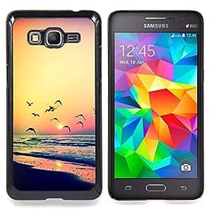 """Puesta de sol Gaviota Océano Verano Naranja"""" - Metal de aluminio y de plástico duro Caja del teléfono - Negro - Samsung Galaxy Grand Prime G530F G530FZ G530Y G530H G530FZ/DS"""
