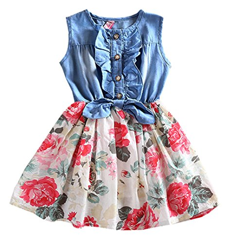 Niyage Girls Princess Dress Sleeveless Denim Tops Floral Tutu Skirts 2T White -