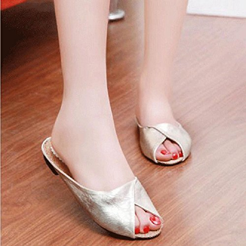 Pantuflas de verano, Internet Las sandalias del verano de las mujeres calzan los deslizadores bajos de las señoras de las sandalias de los zapatos Beige