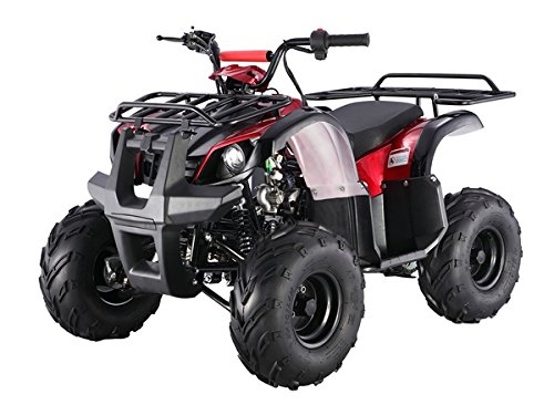 TAO TAO Brand model # ATA-125D -110cc fully automatic engine with REVERSE