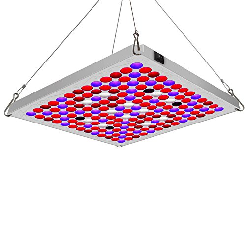 Led Light For Hydroponics in US - 8