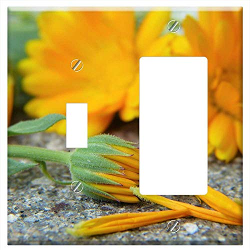 - 1-Toggle 1-Rocker/GFCI Combination Wall Plate Cover - Marigold Calendula Blossom Bloom Orange Heal