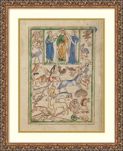 Framed Wall Art Print | Home Wall Decor Art Prints | Adam Naming The Animals by English 13th Century | Traditional ()