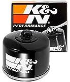K&N KN-160 Filtro de aceite Oil Filter Powersport Canister