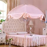 HEXbaby Pop-Up Mosquito/Folding Mosquito Net Tent Canopy Curtains for Beds Anti Mosquito Bites Folding Design with net Bottom for Babys Adults Trip,200220cm