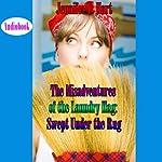 The Misadventures of the Laundry Hag: Swept Under the Rug   Jennifer L. Hart