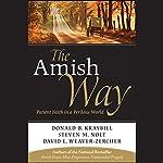 The Amish Way: Patient Faith in a Perilous World | Donald B. Kraybill,Steven M. Nolt
