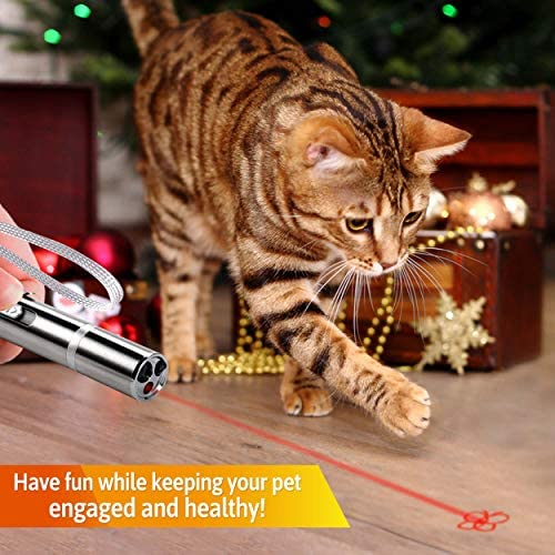 FitPet Cat Toys Interactive Training Exercise Tool for Cats and Dogs 3
