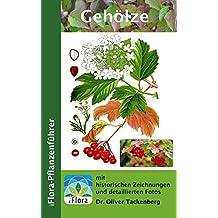Gehölze: Bäume, Sträucher und Lianen (iFlora Pflanzenführer 6) (German Edition)