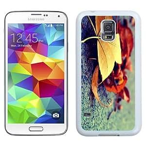 NEW Unique Custom Designed Samsung Galaxy S5 I9600 G900a G900v G900p G900t G900w Phone Case With Autumn Leaves Ground_White Phone Case