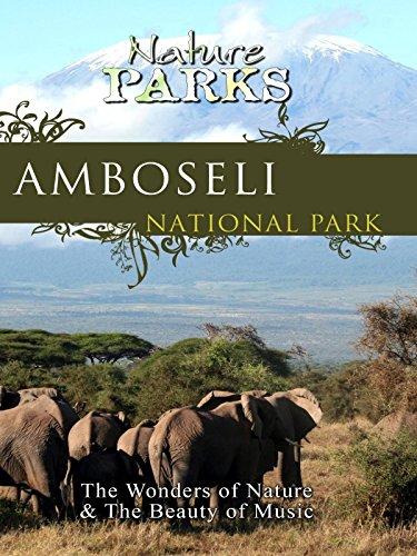 - Nature Parks - Amboseli, Kenya