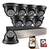Product review for Anlapus 8-Channel 960H Home Security Camera System DVR with 1TB Hard Drive and 8 x 900TVL Indoor Outdoor Weatherproof CCTV Bullet Cameras with Night Vision and Remote Viewing
