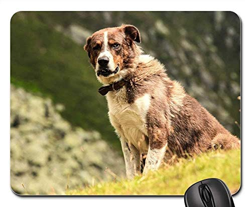 Gaming Mouse Pads,Mouse mat,Dog Canine Pet Animal Mountains Domestic Doggy