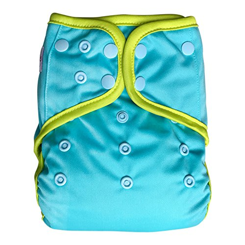 EcoAble Baby Day & Night All-In-One AIO Cloth Diaper w/ Reversible 2-in-1 Insert & Dual Pocket, Size 10-35Lb (Aqua)