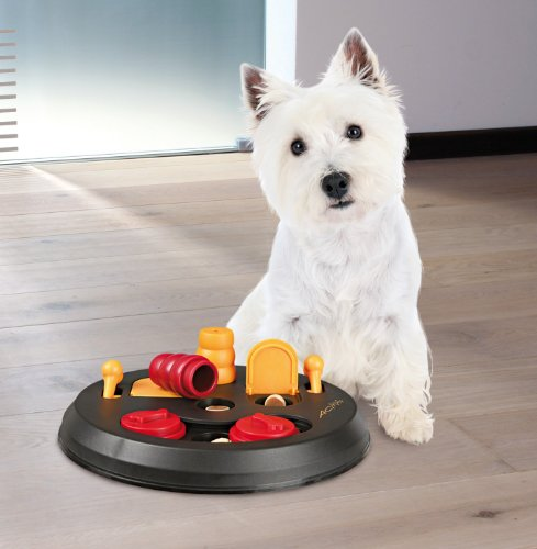TRIXIE-Pet-Products-Flip-Board-Level-2