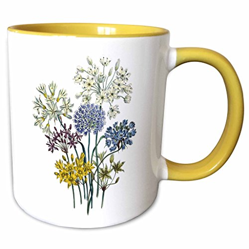 Allium Collection - 3dRose BLN Vintage Flower Collection - Allium with White, Blue Lavender, Purple and Yellow Flowers - 15oz Two-Tone Yellow Mug (mug_153221_13)