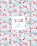 2020 Weekly Planner: Pink Kawaii Axolotl Pet Blue Pattern, Weekly and Monthly Standard Professional Calendar   1 January 2020 - 31 December 2020