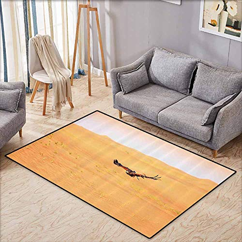 Rectangular Rug,Nature Decor,Harris Hawk Fying Over Dunes in Dubai Desert and The Sky Digital Image,Rustic Home Decor,3'3
