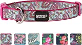 Friends Forever Double Layer Print Paisley Pattern Dog Collar, Pink Medium 14-20