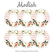 Modish Labels Baby Nursery Closet Dividers, Closet Organizers, Nursery Decor, Baby Girl, Hearts, Flowers, Pink, Stripes