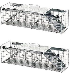 Amazon.com: Havahart 1030 - Conejo de dos puertas con diseño ...