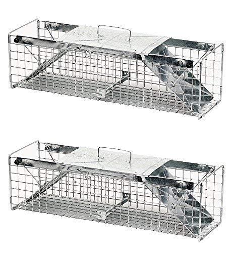Havahart 1030 Live Animal Two-Door Rabbit, Squirrel, Skunk, and Mink Cage Trap (Pack of 2) by Havahart