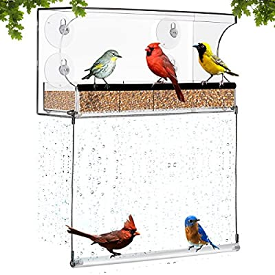 Amazing Window Bird Feeder with Bottom Swing – Acrylic Bird Feeder with 4 Suction Cups – Sturdy Outdoor Feeder for Finch, Cardinal, Blue Bird, Wild Birds – Large Dimensions for Optimal Bird Admiring