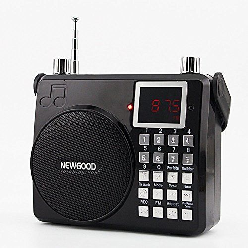 NEWGOOD Handheld Amplifier Amusement Entertainment