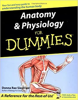 anatomy & physiology for dummies pdf