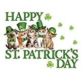 St. Patrick's Day Irish Cats Garage Magnet Set by Collections Etc