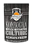 : Kombucha SCOBY & Starter Tea - Live Starter Culture - Fresh - 15 ounces