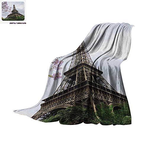 Eiffel Tower Lightweight Blanket Eiffel Natural Flowers Colorful Blossoms Cloudy Sky Perspective Paris Print Velvet Plush Throw Blanket 60