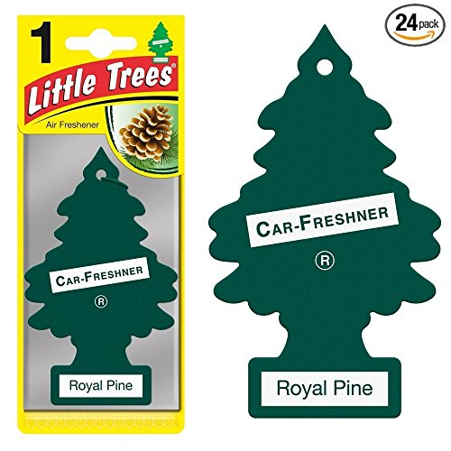 Little Trees® Car Air Fresheners Royal Pine Scent (24 Pack)