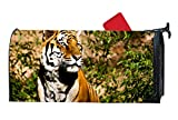 FONDTHEE Magnetic Mailbox Cover - Tiger Wildcat Power Themed, Decorative Mailbox Wrap for Standard Size, Customized Design - Multicolor, 9 x 21 Inches