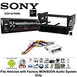 Volunteer Audio Sony CDX-G1200U Double Din Radio Install Kit with CD Player, USB/AUX Fits 2001-2006 Hyundai Santa Fe (Factory Monsoon Sound Only)