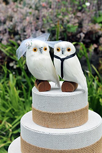 Snowy Owl Wedding Cake Topper: Bride & Groom Cake Topper for a Winter Wedding (Wedding Owl Topper Cake)