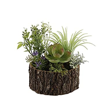 Faux Succulents and Meadow Flowers Tree Trunk