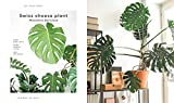 The Leaf Supply Guide to Creating Your Indoor