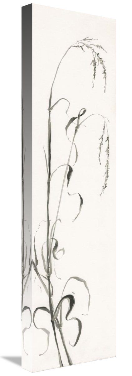 Gray Grasses III Canvas Artwork 8.1 x 30 Global Gallery Chris Paschke