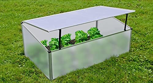 Invernadero para proteger contra las heladas y las plagas 100 x 60 x 40 cm: Amazon.es: Juguetes y juegos