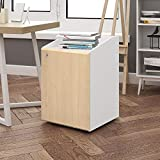 DEVAISE 2-Drawer Mobile File Cabinet with Lock / Letter Size,16.1''W x 15.9''D x 24.0''H (White & Oak)